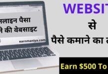 Website Se Paise Kaise Kamaye 2021 – वेबसाइट से पैसे कैसे कमाए